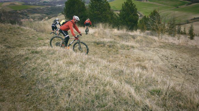 Comté Verte 2019 – Reconnaissance